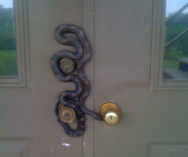 You are now entering the Nope Zone (15 Photos)