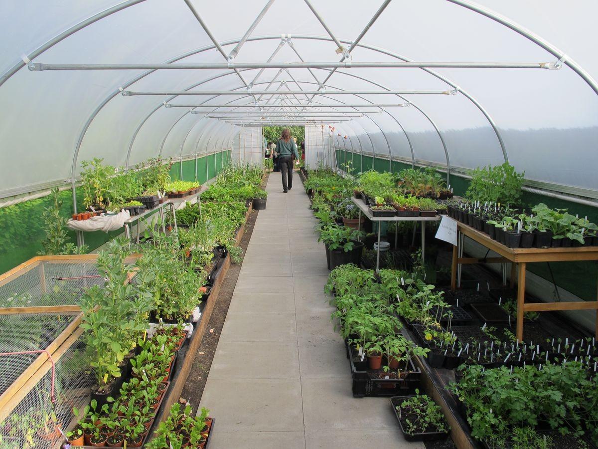 Garden Planning Layout Ideas